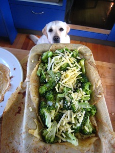 The broccoli layer - Baci... still watching