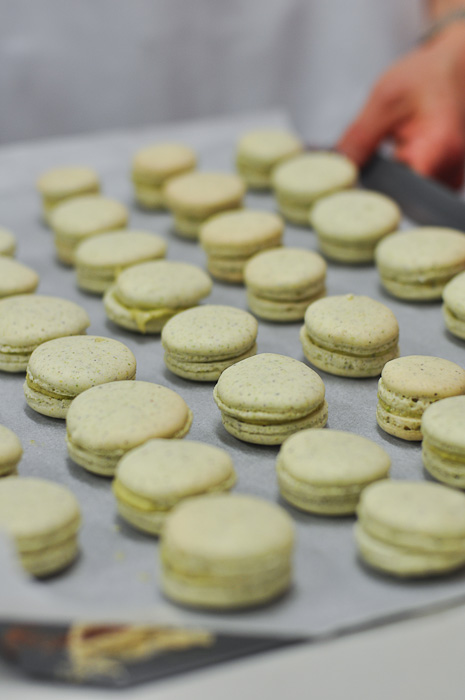 Pistachio Macarons at Essential Ingredients Sydney