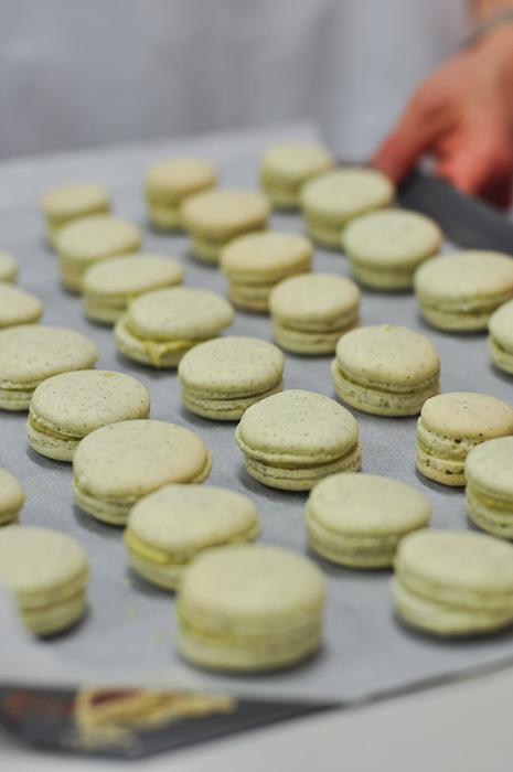 Pistachio Macarons at Essential Ingredients Sydney