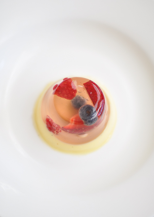 Berry Jelly and Panna Cotta